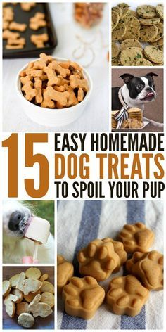 These diy dog treats are made with simple ingredients that you probably have in your kitchen already, and you can feel good about feeding them to your pooch.
