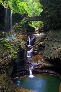 Favorite hike ever...Treeman State park Ithaca, NY