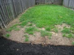 to Get New Grass to Grow in the Heat of Summer: Seed With Potting Soil bare patches in lawn from dog wastebare patches in lawn from dog waste Herb Garden Design, Lawn And Garden, Garden Ideas, Growing Grass From Seed, Planting Grass Seed, Mdr Garten, Lawn Mower Maintenance, Lawn Care Tips, Pergola Pictures