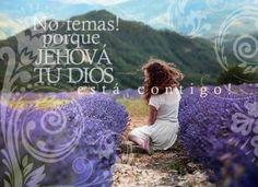 Isaías 41:13 Porque yo Jehová soy tu Dios, quien te sostiene de tu mano derecha, y te dice: No temas, yo te ayudo.