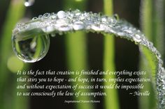 """""""It is the fact that creation is finished and everything exists that stirs you to hope - and hope, in turn, implies expectation and without expectation of success it would be impossible to use consciously the law of assumption."""" - Neville"""