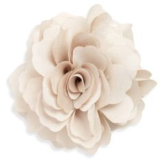 Women's Cara Organza Rose Pin (1.040 RUB) ❤ liked on Polyvore featuring jewelry, brooches, tan, rose jewelry, pin jewelry, rose brooch, cara jewelry and rose jewellery
