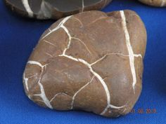 Lake Michigan beach rock. I found many of these: Septarian Nodules, locally called Lightning Stones, are found on beaches in the lower west side of Michigan. They consist of clay cemented onto an iron mineral called siderite. These concretions form in part through bacterial activity. They become fractured and the fractures fill with calcite brought in by ground water. The results forms lightning like patterns on a dark background.