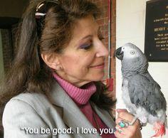 """ヨウムのアレックスは、数を数え、色を見分けることができ、飼い主のアイリーン・ペッパーベルグととてもいい関係を築いていた。2007年に死んだ時の最期の言葉は、""""元気でね。愛してる"""""""