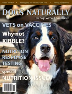Dogs Naturally is a good magazine. Focus is on natural health care for dogs. #pets