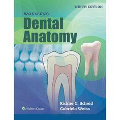Textbook of complete denture prosthodontics pdf prosthodontics woelfels dental anatomy muscleanatomy fandeluxe Gallery