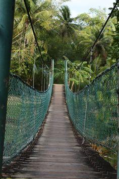 Talofofo Falls, Guam 2-10-2013