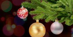 Za Vánoce Češi nejvíce utrácí v cenové kategorii od 5 000 do 10 000 Kč