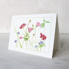 Wildflowers Note Cards