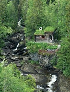 All I Need is a Little Cabin in the Woods Photos) - woods rustic cabin rustic outdoors nature mountain log cabin house home cabin in the woods cabin Little Cabin, Little Houses, Ideas De Cabina, Beautiful Homes, Beautiful Places, Natural Homes, Cabins And Cottages, Log Cabins, Rustic Cabins