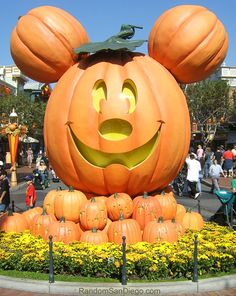 Disney - Halloween ✔️2014