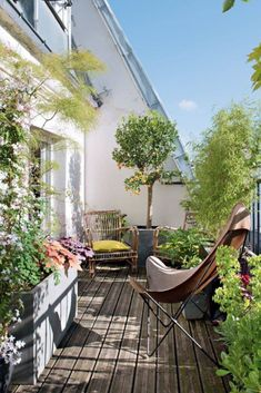 Un appartement avec une terrasse comme un jardin suspendu An apartment with a terrace as a hanging garden Small Balcony Design, Small Balcony Garden, Small Terrace, Terrace Design, Small Garden Design, Garden Spaces, Balcony Ideas, Balcony Gardening, Terrace Ideas