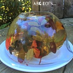 Autumn Exploratory Jelly…, My Favorite,