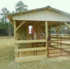 Single stall shelter.  This would be great for a horse that needed to be kept off summer pasture.