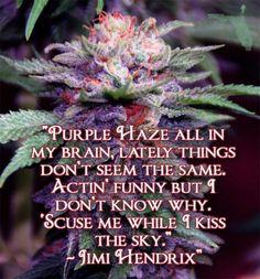 . Jimi Hendrix