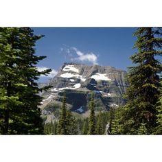 Mountain Peak Framed Between Trees Under A Blue Sky Waterton Alberta Canada Canvas Art - Michael Interisano Design Pics (19 x 12)