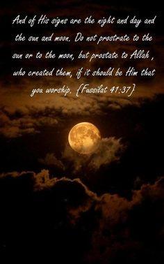 Fusillat 41:37