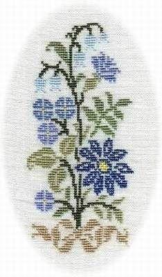 bouquet-bleuet