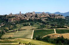 Lo storico Orvieto Doc, verso il futuro con vino, arte, cultura, paesaggi, cibo…