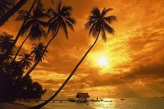 Photos of Trinidad and Tobago