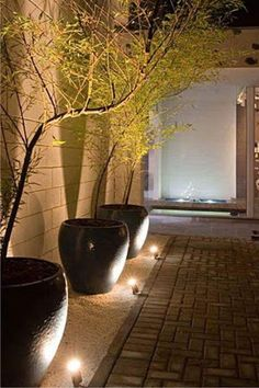 Exterior Lighting Ideas Nothing has refreshed the look of your home like new exterior lights. At Lamps Plus, we provide complete exterior lighting for porches, decks and landscaped areas that c… Backyard Lighting, Outdoor Lighting, Lighting Ideas, Ceiling Lighting, String Lighting, Accent Lighting, Pathway Lighting, Outdoor Decor, Back Gardens