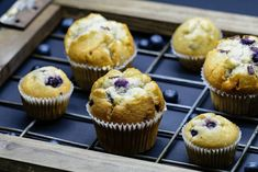 """Food Pixels (@food_pixels) on Instagram: """"Yummy blueberry muffins what a wonderful way to start the day.⠀ ⠀"""