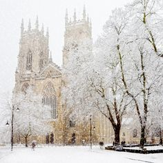 """York Minster in the snow by John Potter ---""""Snow began to fall, until a million little flakes were drifting down from a soft, heavy sky. All the buildings of York became a little fainter""""."""