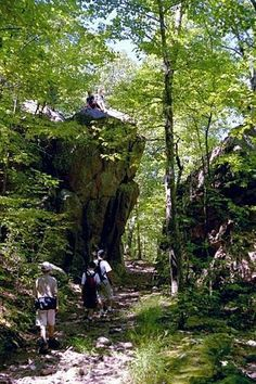 12 Hiking Spots in Missouri Are Completely Out of This World: 1. Taum Sauk Mountain State Park, Middle Brook