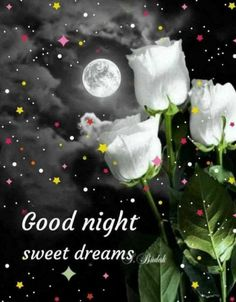 Good night sister and yours, sweet dreams 🌜💞🌛😀💖 Good Night Images Hd, Night Pictures, Morning Images, Funny Good Night Quotes, Good Night Messages, Good Night Sister, Good Night Sweet Dreams, Good Night Greetings, Night Wishes