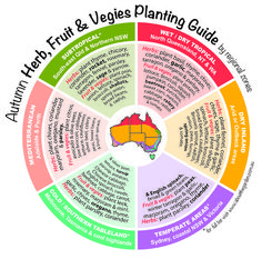 Autumn Herb, Fruit & Vegies Planting Guide by regional zones Aus
