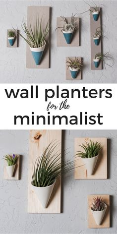 wall planter made of ceramic comes in various colors, sizes and backings. Air plant included.  #minimal #minimaldesign #homedecor