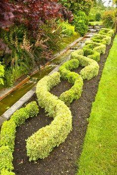 Pacific NW Vashon Island couple creates a string of English Garden Spaces, Balcony Garden, Boxwood Garden, Dwarf Boxwood, Potager Bio, Vashon Island, Pinterest Garden, Vegetable Garden Design, Formal Gardens