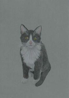 CUTE画「CAT」[Vic Blood] | ART-Meter