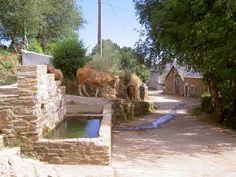 La Laguna de Castilla, #León #CaminodeSantiago #LugaresdelCamino