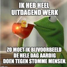 Tea Meme, Mommy Quotes, Walmart Photos, Dutch Quotes, Kermit The Frog, Mariah Carey, Adult Humor, Funny Photos, Crowns