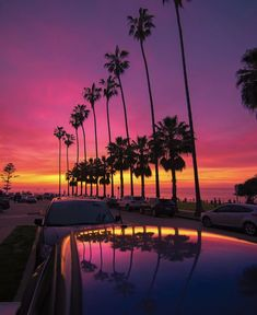 Tag a friend who sholud come visit San Diego! Night Aesthetic, City Aesthetic, Travel Aesthetic, Beach Aesthetic, Sunset Pictures, Cool Pictures, Visit San Diego, Summer Backgrounds, Summer Wallpaper