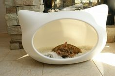 Modern cat Bed...  If only they had one for my dog too!