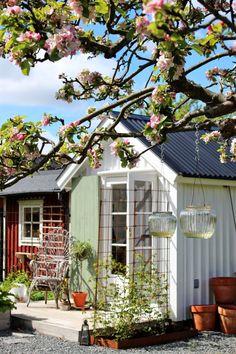 Ein Cottage-Garten blühte in Schweden | Marktführer im Möbel !