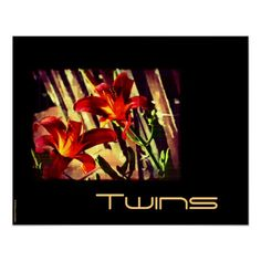 Twins Poster by Groovyal