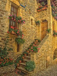 Escalera de entrada, Aveyron, Francia foto por janice