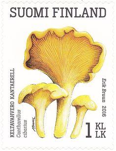 Wild Mushrooms, Stuffed Mushrooms, Postage Stamps, The World, Finland, Stamps, Stuff Mushrooms