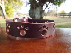 Paws are back!  Leather dog collar available in all sizes and stylish colors.