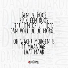 New quotes funny monday humor Ideas Dutch Quotes, New Quotes, Change Quotes, Quotes To Live By, Sarcastic Quotes, Funny Quotes, Dutch Words, School Quotes, Super Quotes