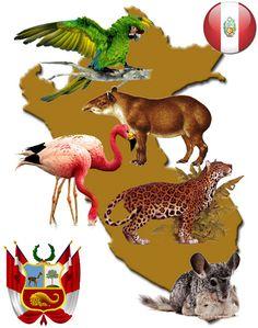 animales extintos y en extincin en la Repblica Argentina