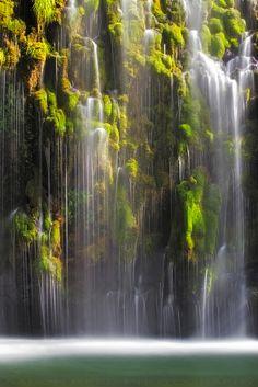 The weeping walls of Mossbrae Falls, Dunsmuir, CA