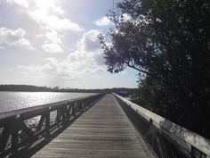 4. John D. MacArthur Beach State Park:  This secluded beach is a great place to explore Florida's wildlife, take a nature walk or go kayaking.