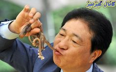 A South Korean man eats a live octopus during an event to promote a local food festival in Seoul on September (Photo by Jung Yeon-Je/AFP Photo) Bad Food, Weird Food, People Around The World, Around The Worlds, Baby Octopus, Sausage Rolls, Exotic Food, Food Festival, Good News