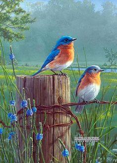 Resultado de imagen de paisajes con pajaros y flores