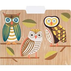 Owl file folders - I love the wood grain and the graphics.