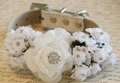 Wedding collar for Hope!